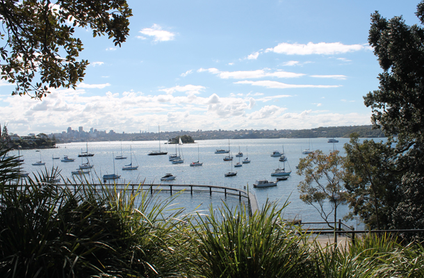 Sweet Monday, Double Bay, Sydney