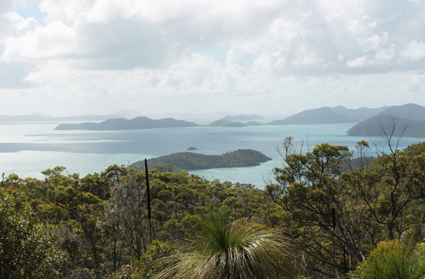Sweet Monday, Airlie Beach, Whitsunday Island, The Whitsundays, Queensland, Australia