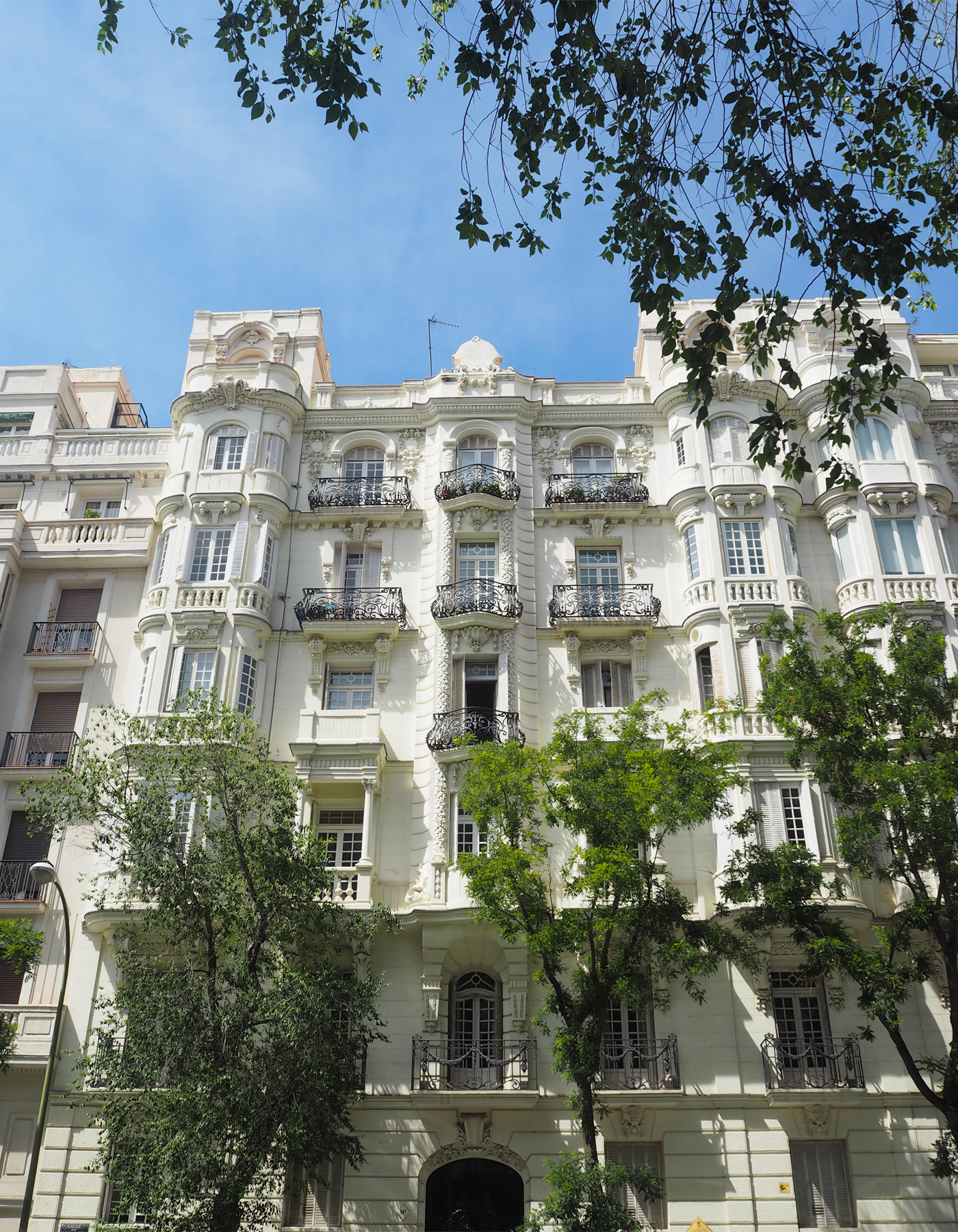 Royal Botanical Gardens Madrid