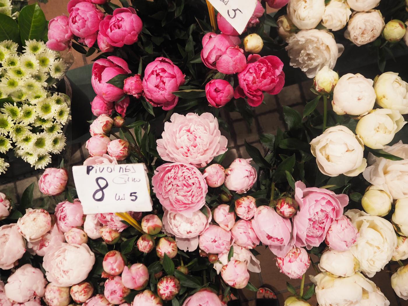 Cannes flower market
