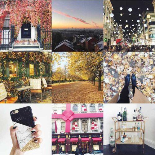 Sweet Monday Blog 2016