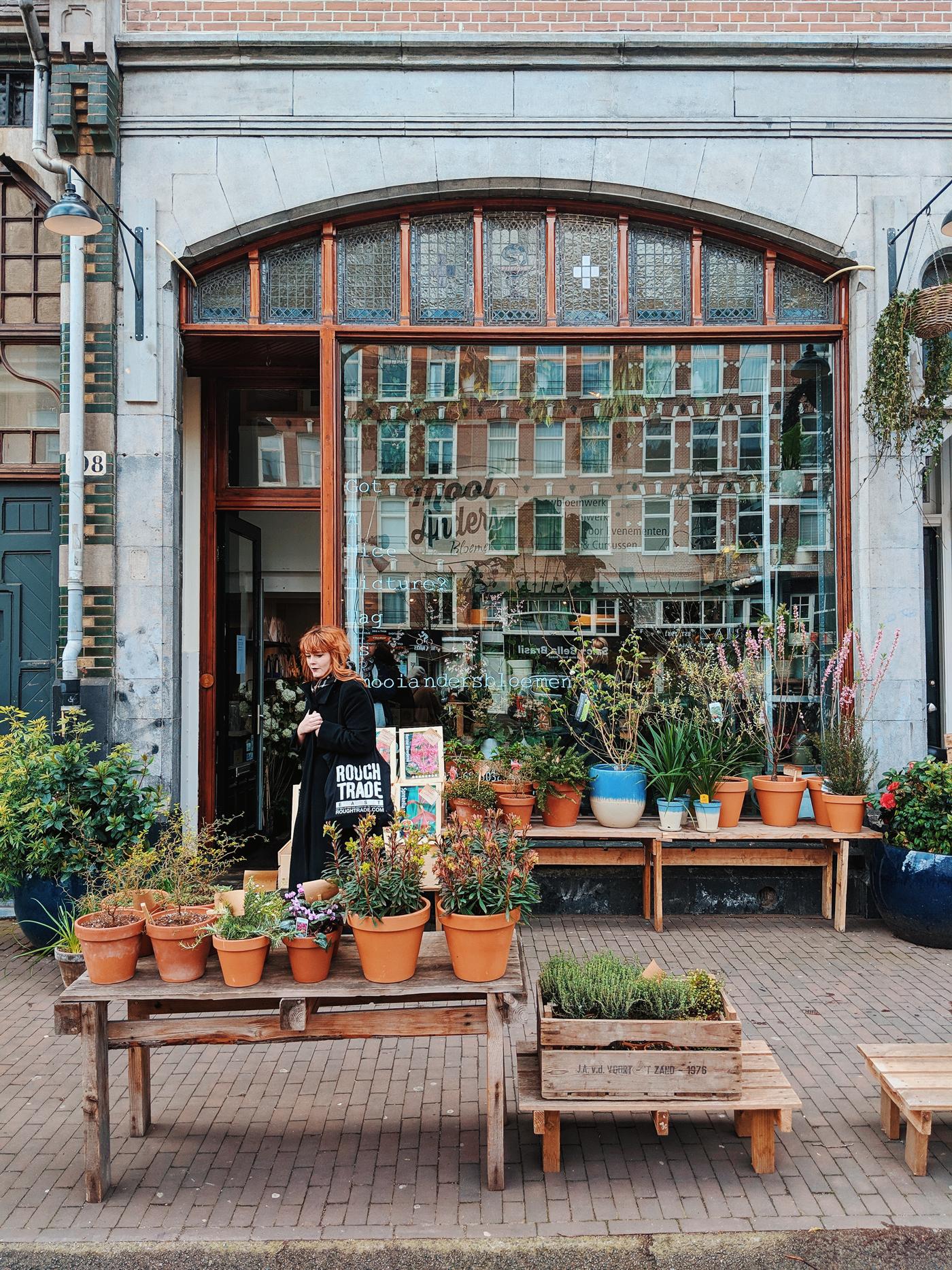 Amsterdam Plants