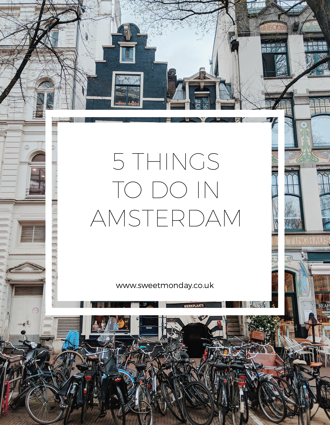 5 Things to do in Amsterdam